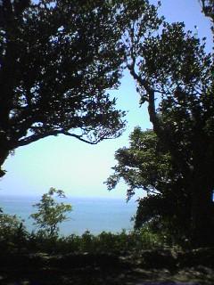 本島南部の旅